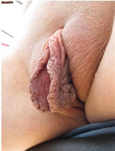 HUGE PUSSY LIPS