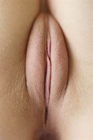 Nice Pussy Close Up A Pussy Close Up Shaved Pussy Shot Mound Slit Cunt